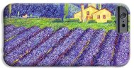 lavender-fields-monika-pagenkopf (2)