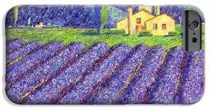 lavender-fields-monika-pagenkopf (2)