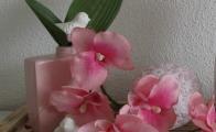 rosar2