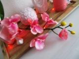 rosar8