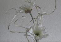 weiß4
